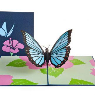 Blue Morpho Butterfly 3D card