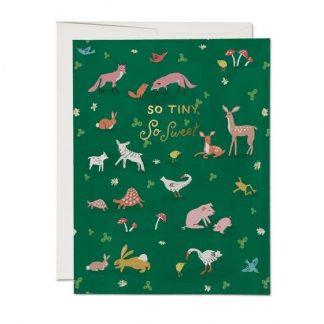 Tiny Animals card