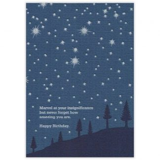 Insignificance Birthday Card