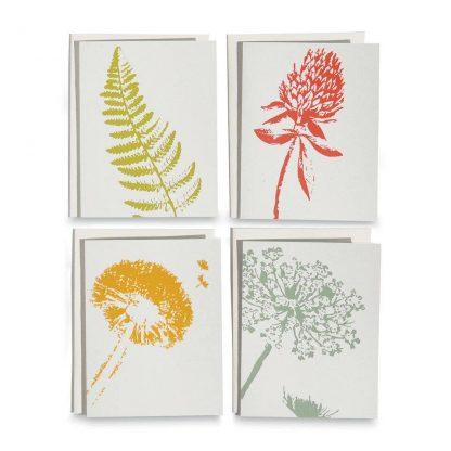 Wild Pretties Note Cards
