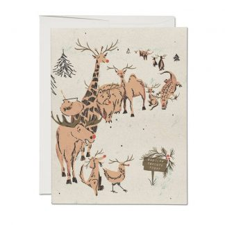 Rudolph Auditions cards